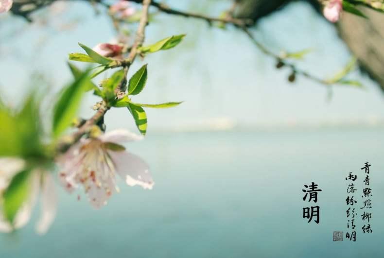 清明时节·缅怀逝者·拥抱春天