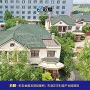彩麟金属瓦天津正东科技园